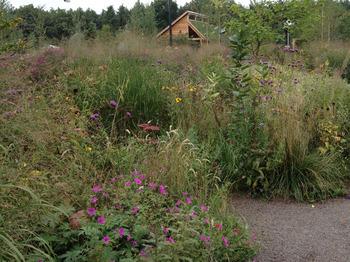 floriade_garden.jpg